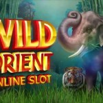 Wild Orient – ein neuer Microgaming Spielautomat