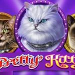 Millionenauszahlung mit Online Spielautomat Pretty Kitty