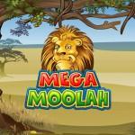 Mega Moolah Jackpot erneut geknackt!
