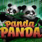 Doppelte Pandas im Online Spielautomaten Panda Panda
