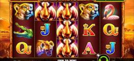 Neues Safariabenteuer mit Online Spielautomaten Great Rhino
